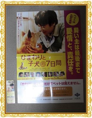 映画NCM_0388