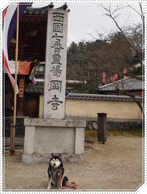寺ガール005