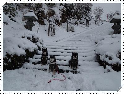 雪遊び075