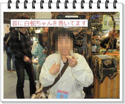 201304061424336e1.jpg
