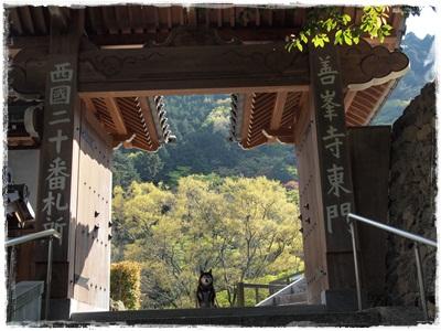 西国 京都079