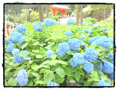 西国京都050