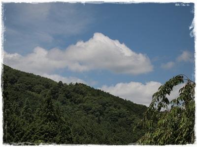 滝谷菖蒲園088