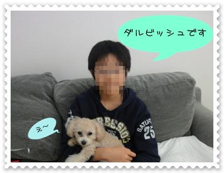 a1-2_20110107185923.jpg