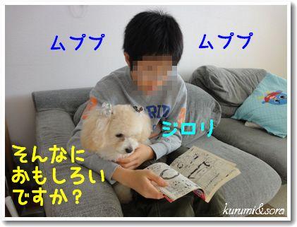 a10_20101129214053.jpg