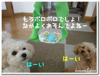 a10_20101201153810.jpg