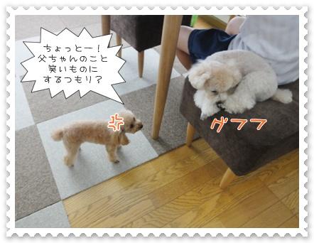 a10_20110826193407.jpg