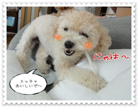 a10_20111013205531.jpg