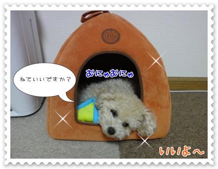 a10_20120111231632.jpg