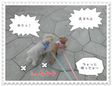 a11_20110609152531.jpg