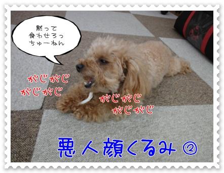 a11_20110706193745.jpg