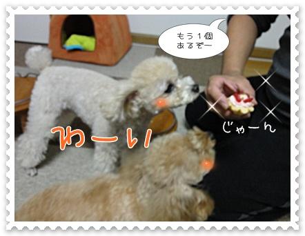 a11_20111021152150.jpg