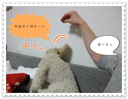 a11_20111031211007.jpg