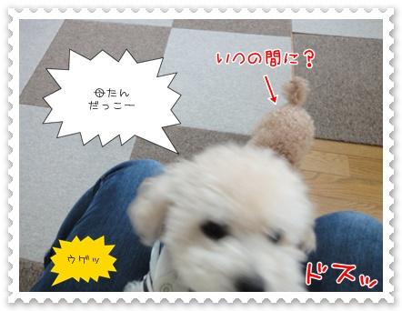 a11_20111208235153.jpg