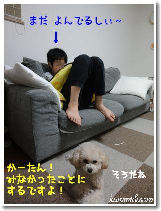 a12_20101208201614.jpg