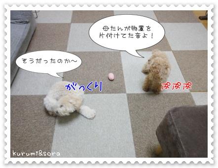 a12_20110515203657.jpg