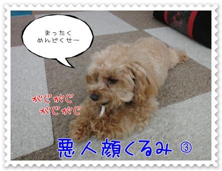a12_20110706193745.jpg