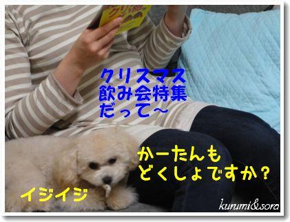 a13_20101129214122.jpg
