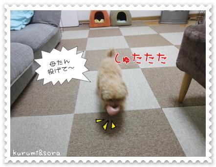 a13_20110515203743.jpg