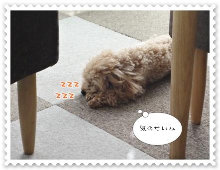 a13_20110820194402.jpg