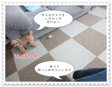 a13_20111208235315.jpg