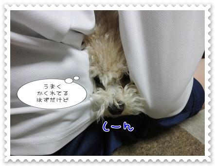 a13_20120119193120.jpg