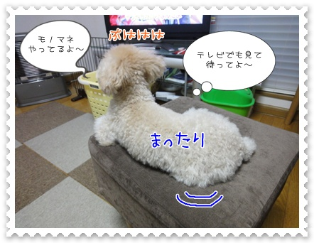 a14_20111227220408.jpg