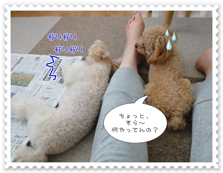 a15_20110912174109.jpg
