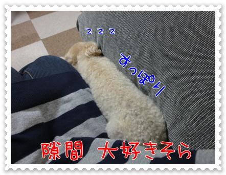 a18_20110706193823.jpg
