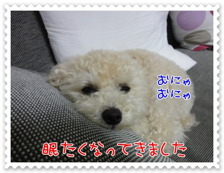 a18_20110810214532.jpg