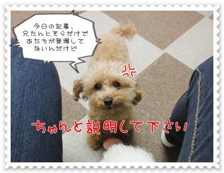 a19_20110609193244.jpg