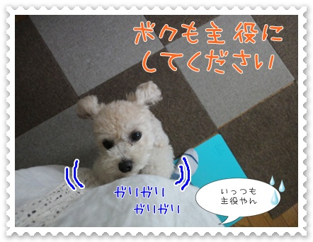 a19_20110914193336.jpg