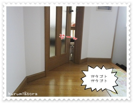 a1_20110515203613.jpg