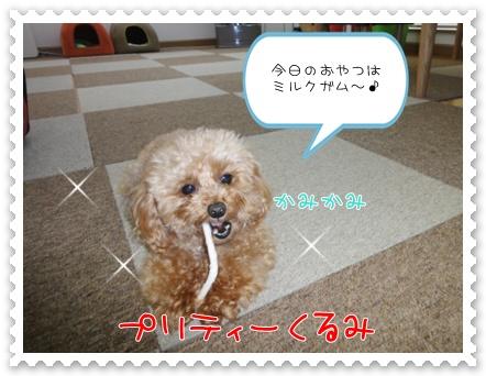 a1_20110706193700.jpg