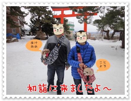 a1_20120102142207.jpg
