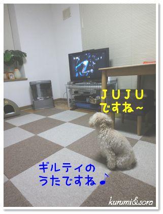 a20_20101204105838.jpg