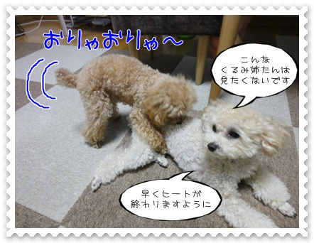 a21_20110727183635.jpg
