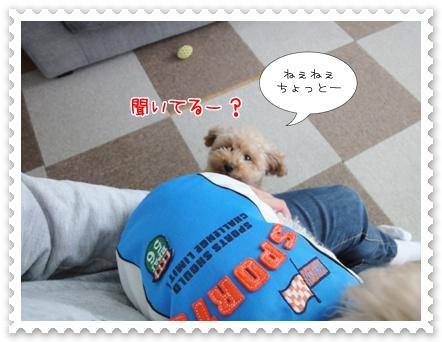 a21_20111208235458.jpg