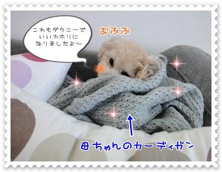 a2_20120105200737.jpg