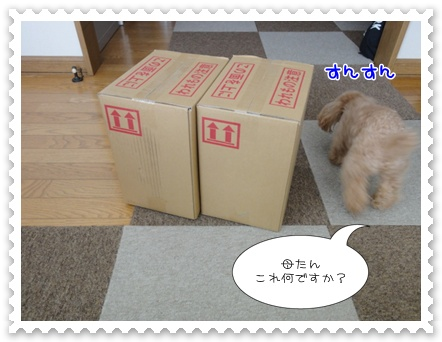 a2_20120114170723.jpg