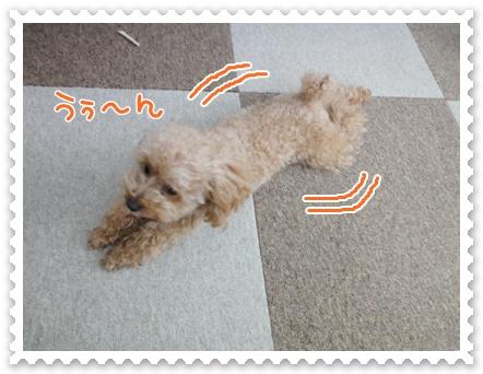 a2_20120122150036.jpg