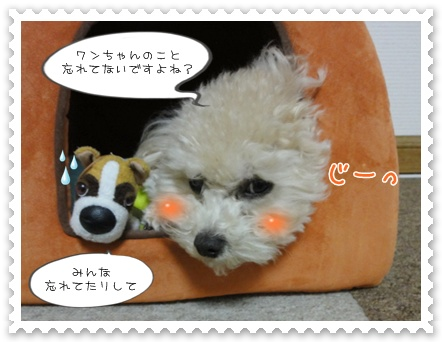 a2_20120124195425.jpg