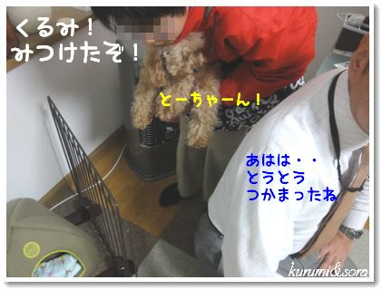 a3_20101214181838.jpg