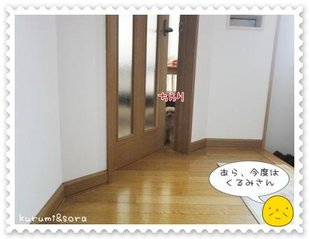 a3_20110515203609.jpg