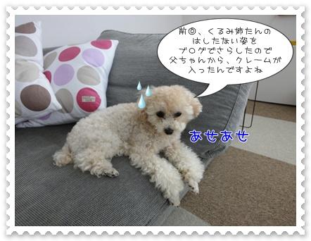 a3_20110730111003.jpg
