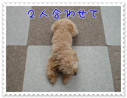 a3_20110810215630.jpg
