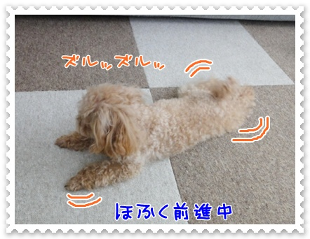 a3_20120122150036.jpg