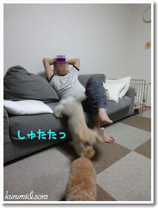 a4_20101217185343.jpg