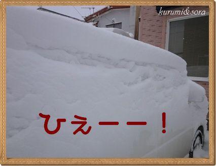 a4_20101228213758.jpg