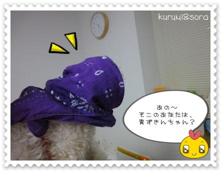 a4_20110124204033.jpg